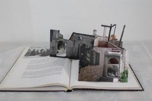 רעות טסלר, דיוקן ספר, צילום, 2015